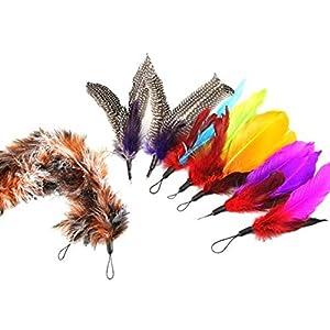 Gzq pour animal domestique d'entraînement jouet Multicolore plumes Interactive Pets Jouet Tête de bâton de rechange d'entraînement télescopique Baguette de Jeu pour Chat Chaton Lot de 9