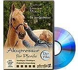 Akupressur für Pferde - der Film
