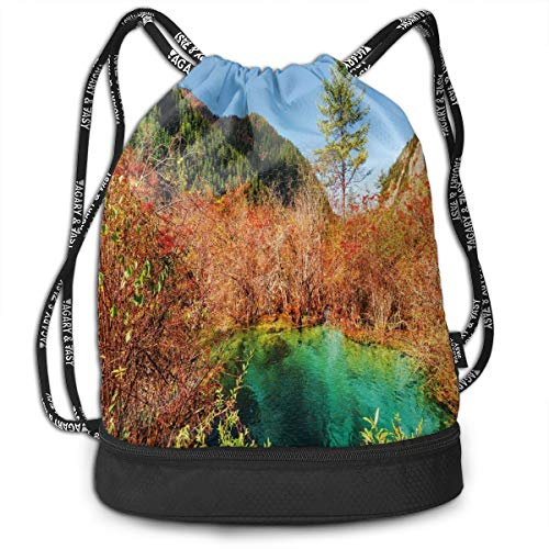 LULABE Printed Drawstring Backpacks Bags,Idyllic Fall Landscape with A Creek Among The Forest In National Park Valley Art,Adjustable String Closure Washington Nationals Ipad