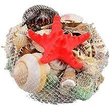 0.5kg Mar Cáscara Conchas marinas playa Estrella de mar Pequeña Grande Boda Mesa Decoración Kraft