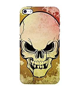 printtech Premium Best Quality Multi color Designer Printed back cover Back Case Cover for Apple iPhone 5C