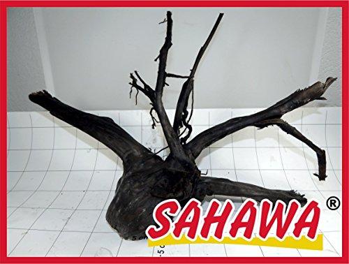 Sahawa® Moorwurzel Größe 5 40 - 50 cm, Moorkienwurzel,rote Moorwurzel, Moorkienholz, Garnelenbaum