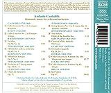 Romantic Music for Cello and Orchestra