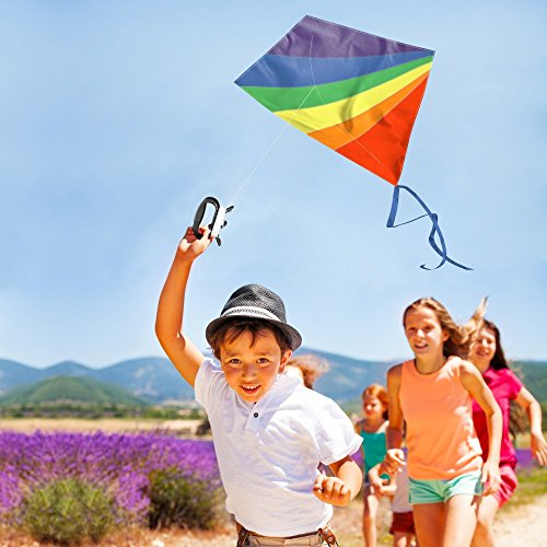 Einleiner Drachen für Kinder und Erwachsene - Drachenflieger Flugdrachen, Drachen Steigen Spiele 120x100cm mit 50m Drachenschnur und 2x200cm Streifenschwänze, Robust Kinderdrachen mit Fiberglas Stäben