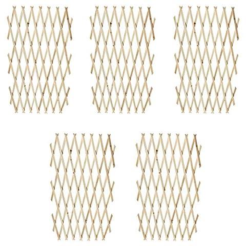 vidaXL Lot de 5 treillis en bois extensibles 180 x 90 cm