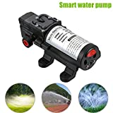 Rokoo 12V 60W Micro elektrische Membran Wasserpumpe mit Schalter für Auto waschen Garten Bewässerung