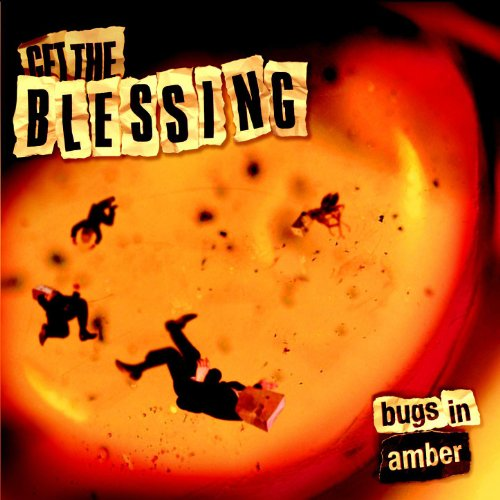Bugs in Amber