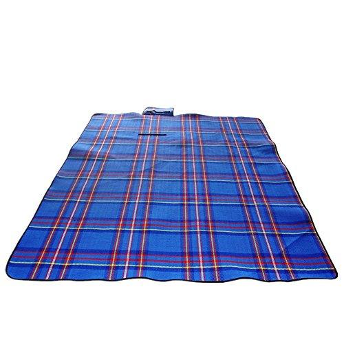 mat plaid de pique-nique en plein air (200 * 150cm) ( couleur : Blue Grid )