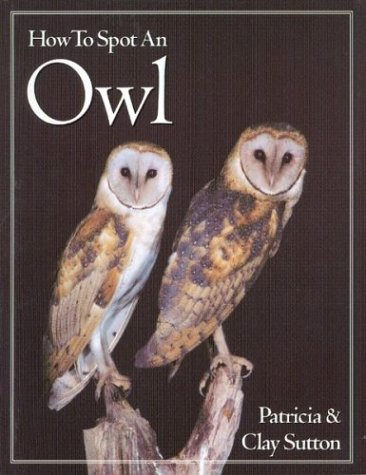 How to Spot an Owl (The How to Spot Series)