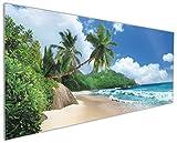 Wallario Küchen-Rückwand | Glas mit Motiv Urlaub auf den Seychellen unter Palmen am Sandstrand in Premium-Qualität: Brillante Farben, ohne Aufhängung | geeignet zum Verkleben |Spritzschutz Küche Herd Spüle | abwischbar | pflegeleicht