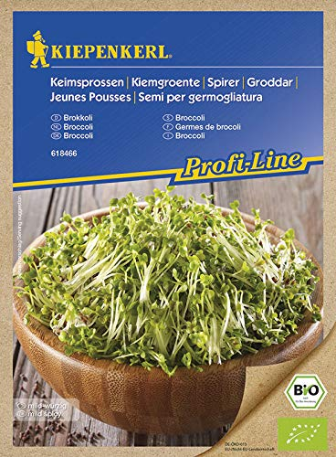 Kiepenkerl Keimsprossen Brokkoli (Bio-Saatgut)