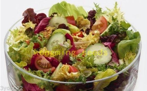 graines de laitue 200 pcs Feuille Salad Lolla Biondi Heirloom bio graines végétales pour plantes maison de jardin
