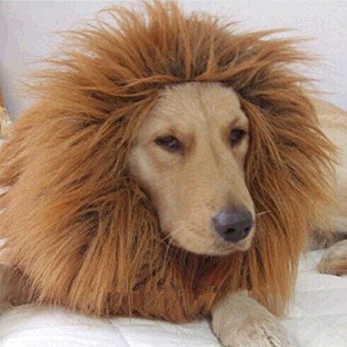 aaa226Löwe Mähne Perücke für Haustier Hund Katze Kostüm verstellbar Lion Haar Kleidung (80's Fancy Dress Kostüme)