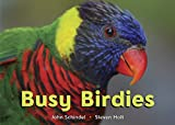 Busy Birdies (A Busy Book)