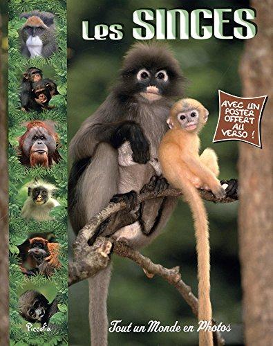 Les singes par