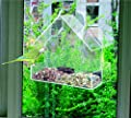Redwood Leisure Window Bird Feeder Clear Perspex Hanging Bird Feeder with Suction Cup BB-BF111 from Redwood