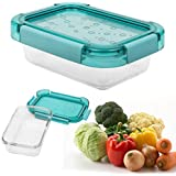 Livzing Borosilicate Rectangular Food Storage Airtight Glass Container With Lid, 750ml (BA-778)