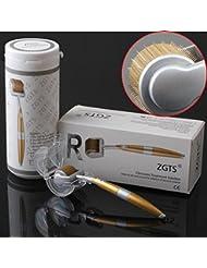 ZGTS-0.5MM Titanium Derma Roller-Master mit Micronadelsystem