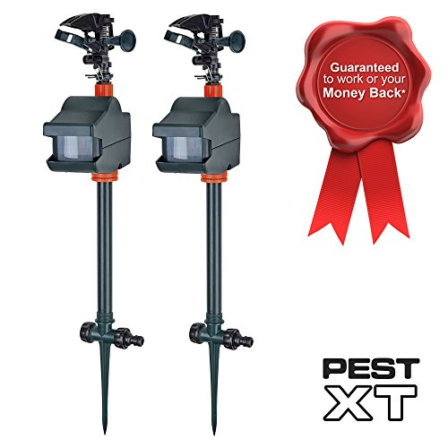 Pest XT Jet Spray Battery Operated Motion Sensor Activated Cat and Fox Scarer & Repellent - Animal/Wildlife Repeller, Deters Garden Pests, Connects to Garden Hose (Double Pack)