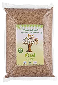Ojal Organic Wheat Lokwan 5Kg