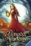 Princess Academy, Band 3: Der Auftrag des Königs