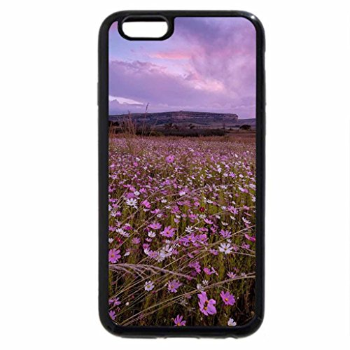 iPhone 6S Plus Case, iPhone 6 Plus Case (Black & White) - wonderful wildflowers in the desert