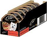 Cesar Hundefutter Nassfutter Landküche Rind & Pasta, 7 er Pack, (7 x 2 Schalen x 150 g)