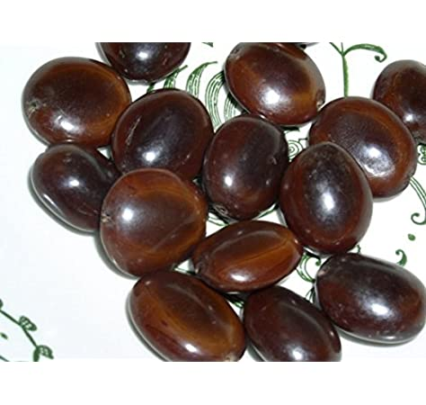 Buy Pmw Grade A Quality Mountain Tamarind Seeds Pahadi Imli Beej Average Size 2 3 Inch Per Seed Great For Knee Pains 250 Grams Loose Packed Online At Low Prices In India Amazon In