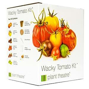 Plant Theatre Kit Wacky Tomatoes – 6 fantastischen Sorten zum Anbauen, ein großartiges Geschenk
