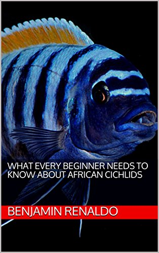 What Every Beginner Needs to Know about African Cichlids (English Edition) (Cichlid African Fisch)