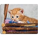 Mousepads Kätzchen Im Korb Braun Holz Klein Niedlichen Afraid Bild ID  20356176 Von Liili Individuelle