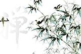 Scenolia Papier Peint Intissé Peinture Chinoise Branches et Oiseaux 4 x 2,70m - Décoration Murale Effet Trompe l'Oeil - Revêtement Panoramique Tapisserie XXL - Pose Facile et Qualité HD