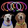 BoyYang Hunde Leuchthalsband LED Hunde Halsband mit Knopfbatterien - Längenverstellbarer Haustier Sicherheit Kragen für Hunde und Katzen- Haustier Sicherheit Kragen für Hunde und Katzen(S-L,