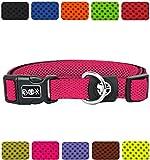 DDOXX Hundehalsband Air Mesh in vielen Farben & Größen für kleine & große Hunde | Halsband Hund Katze Welpe | Katzenhalsband klein | Hunde-Halsbänder breit Leuchtend | Pink, S