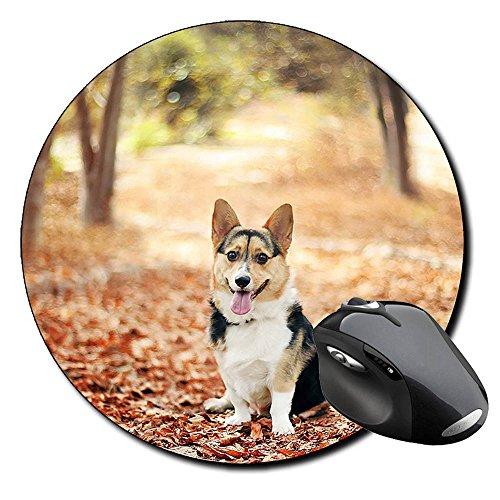 Corgi Gales De Pembroke Welsh Corgi Pembroke B Tappetino Per Mouse Tondo Round Mousepad PC