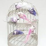 Dekovögel Vögel mit Clip (6 Stück), rosa, flieder