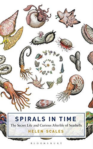 Spirals in Time: The Secret Life and Curious Afterlife of Seashells (Bloomsbury Sigma) -