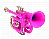 Nasir Ali Trompette de poche BB Pitch, Rose laqué