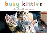 Busy Kitties (A Busy Book) (English Edition)