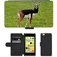 GoGoMobile, cellulare, carte, Custodia a portafoglio in pelle PU, motivo naturale Antelope Antilope cervicapra M00118365 animale marrone, per Apple iPhone 5C