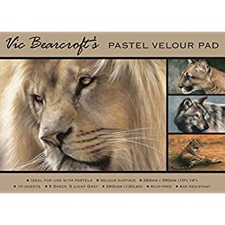 Vic Bearcroft's Pastel Velour Pad - Large Sandy and Light Grey (350mm x 500mm)