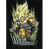 Póster Son Goku, guerrero Dragon ball Z