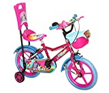 #7: NY Bikes Nike 14T Pink SS Steel Kids' Bicycle, 14 inches 3 to 5 years (Pink and Sky Blue)