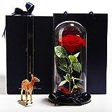 Ewige blume glas-abdeckung künstliche rose konserviert blumenornamente-A