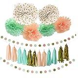 Ailiebhaus 30Pcs Happy Birthday Deko-Set Seidenpapier Pom Poms Blumen Laternen ,mit Quaste Girlande DIY Tassels (Bunt 30P)