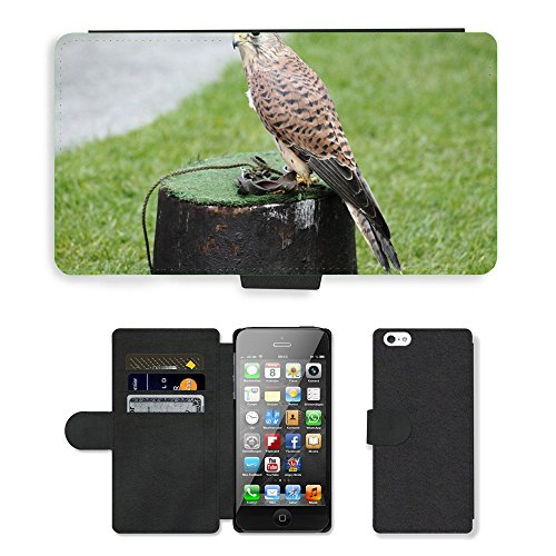 GoGoMobile PU LEDER LEATHER FLIP CASE COVER HÜLLE ETUI TASCHE SCHALE // M00117592 Turmfalke Falco tinnunculus Falcon // Apple iPhone 5 5S 5G (Falchi Leder)