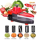 BOCHEN Strong Durable Vegetable Slicer Grater Cutter Chopper,6 in 1 Interchangeable Blades with Peeler with Food Catch Tray, Hand Protector,Food Storage Container (Red)