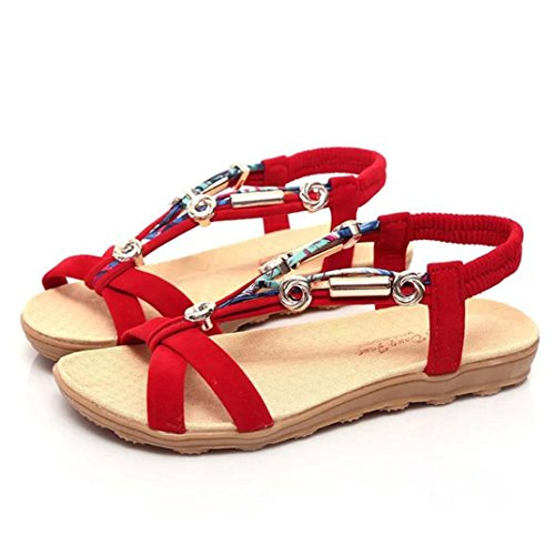 ZARLLE Sandalias De Mujer 2018 Sandalias Bohemias Plataformas Chancletas Zapatillas Slim Chanclas Mujer Zapatillas De Verano Casuales Sandalias Planas Zapatos De Playa Con (42, Rojo)