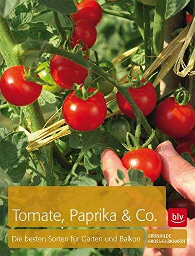 tomaten-paprika-co-die-besten-sorten-fur-garten-und-balkon