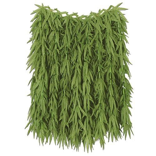 Helecho-tropical-hoja-adulta-Hula-falda-60cm